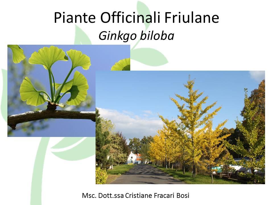 Piante Officinali Friulane