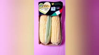 O milho na Itália