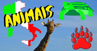 Os animais em italiano