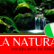 Vocabulário de Italiano: La Natura - A Natureza