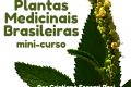 Mini-curso Plantas Medicinais Brasileiras: usos e tradições - 21/11/2020 - 17:00 - 19:00